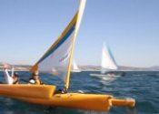 Hobie Cat Sailboats for sale