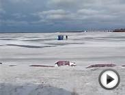 076.MOV Erie Yacht Club, Erie Pa, Ice Fishermen-Erie Bay
