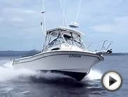 Grady White 282 Sailfish 2001 Boats For Sale